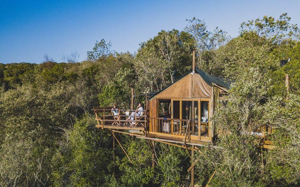 Teniqua Treetop Suites