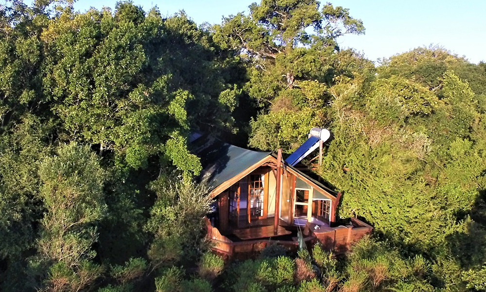 Eco-friendly Resort Treetop Accommodation