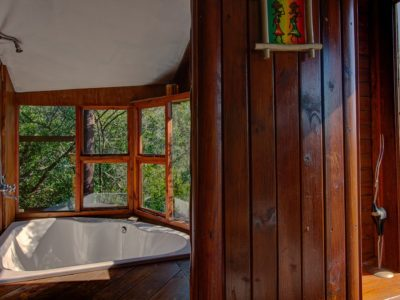 Gorge-View-book-teniqua-treetops-ecolodge-garden-route-accommodation-treetops