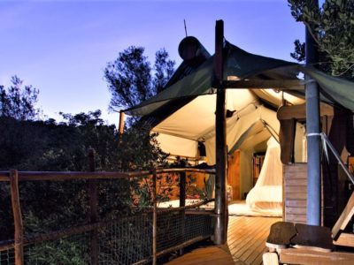 Greenbeard-book-teniqua-treetops-ecolodge-garden-route-accommodation-treetops
