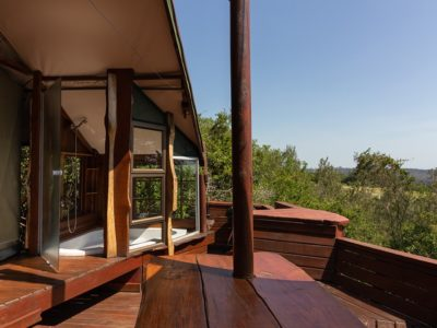 louries-nest-book-teniqua-treetops-ecolodge-garden-route-accommodation-treetops