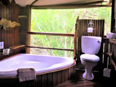 Philsophers-Perch-book-teniqua-treetops-ecolodge-garden-route-accommodation-treetops