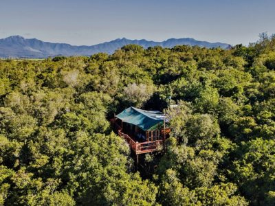 The Eyrie - Family Sharing Treetop Suite