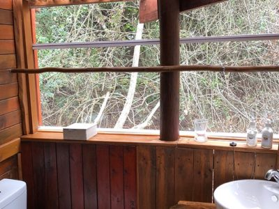 The-Eyrie-book-teniqua-treetops-ecolodge-garden-route-accommodation-treetops