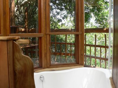 Tranquility-book-teniqua-treetops-ecolodge-garden-route-accommodation-treetops