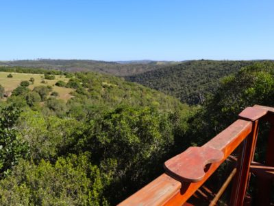 view-from-the-eyrie-deck