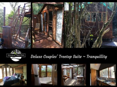 Tranquillity Images only reduced